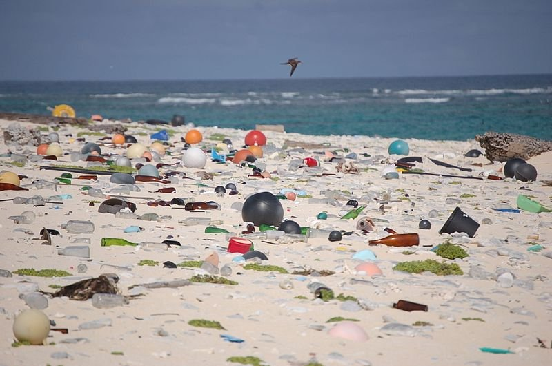 A plastic strewn beach - U.S. Fish and Wildlife Service Headquarters